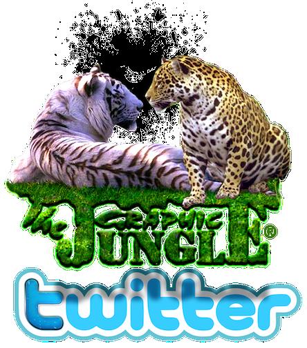 gj-logo4_twit<